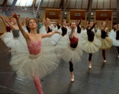 20091019052503-le-danse.jpg