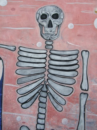 20100219050910-skeleton-one.jpg