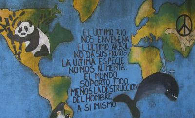 20100408215314-ecologia.jpg
