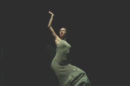 20110919170448-flamenco.jpg